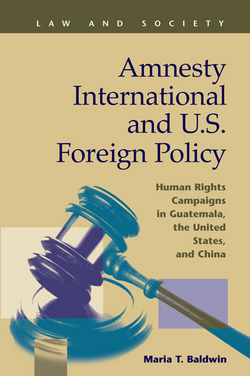 Amnesty International and U.S. Foreign Policy: Human Rights Campaigns in Guatemala, the United States, and China